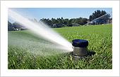 Lawn Sprinkler Installation Service